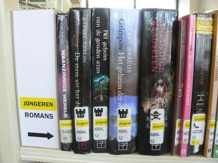 Jongerenromans